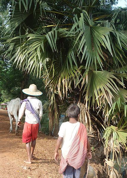 foulard du cambodge